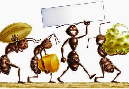 Risparmiare si può, impariamo dalle formiche