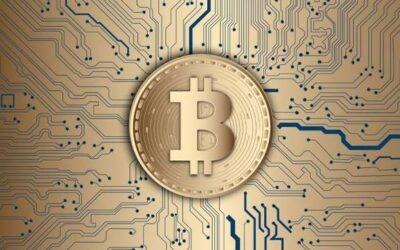 Stipendi in Bitcoin ?